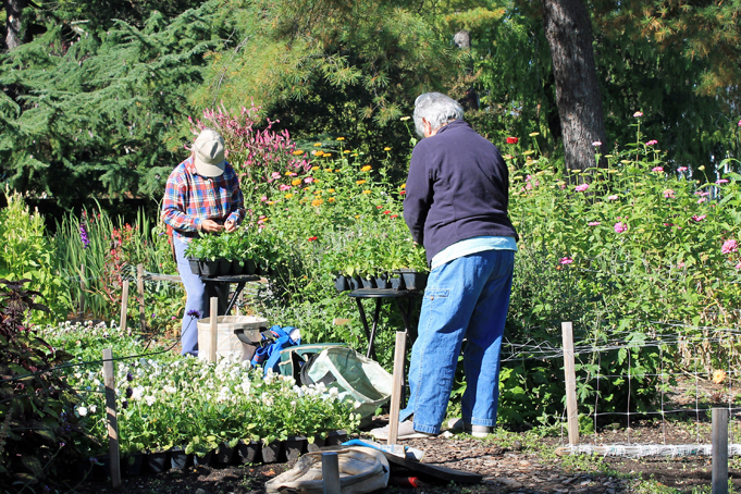 Garden Volunteers at Hillwood