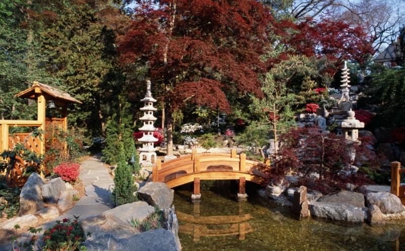 Tanabata: Japanese Star Festival