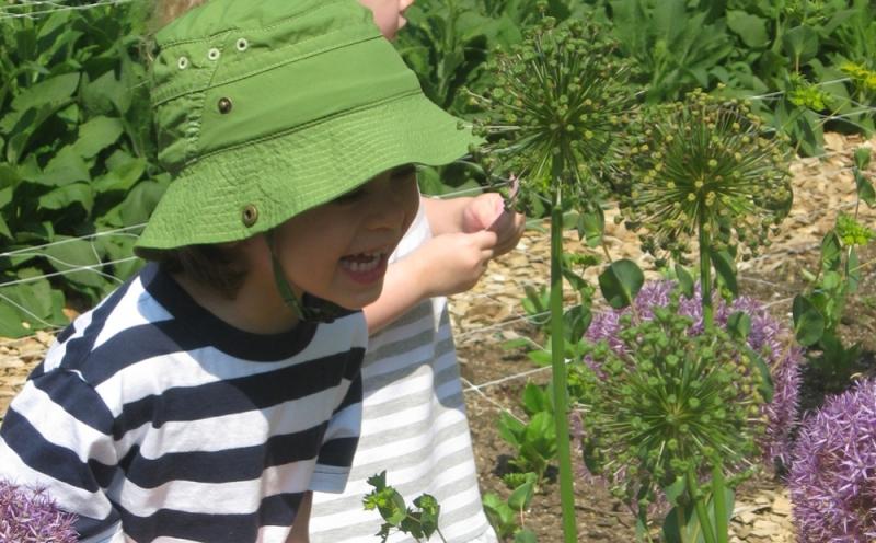Thursday Preschool Series: Gardens Alive!